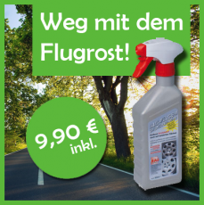 Flugrost Entfernen... do it yourself!